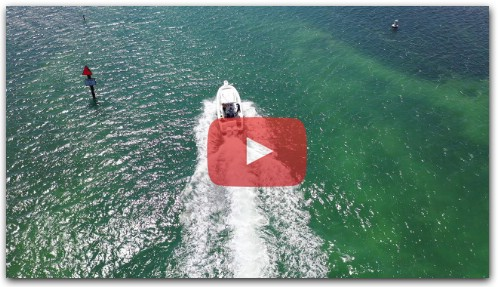 Drone Footage Key Largo Lobster Diving