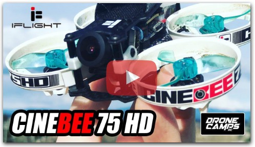 iFlight Cinebee 75HD - Review, Flights and Betaflight Setup