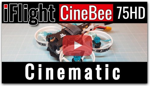 iFlight CineBee 75HD - Cinematic Flight
