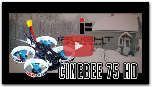 Demo CineBee 75 HD by F6 FPV